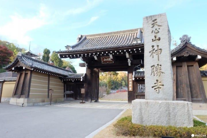 Kuil Shinshoji, Tenggelam di Dalam Dunia Zen